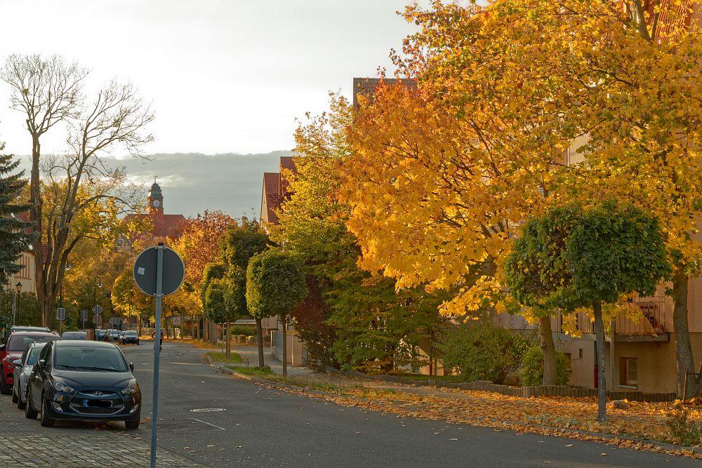 Umfrage zur Radverkehrssituation in Eilenburg und Fahrradklimatest